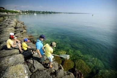 La pêche au plancton sera-t-elle fructueuse ?